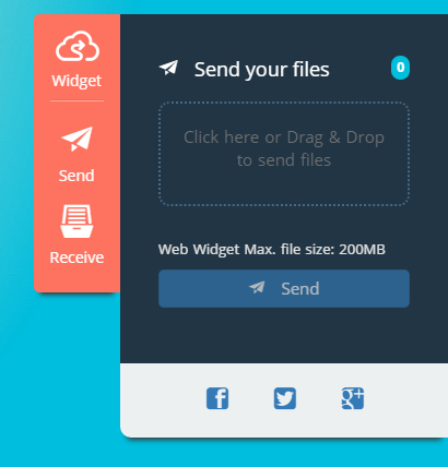 Web Widget Extensions